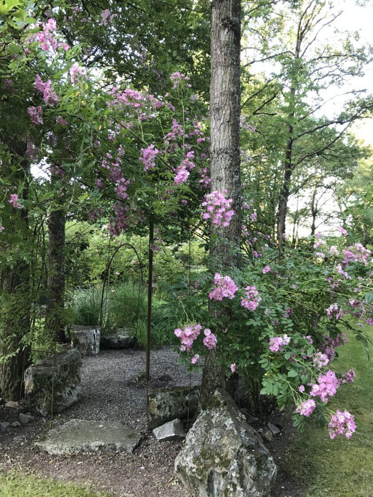 jardin agnes 05