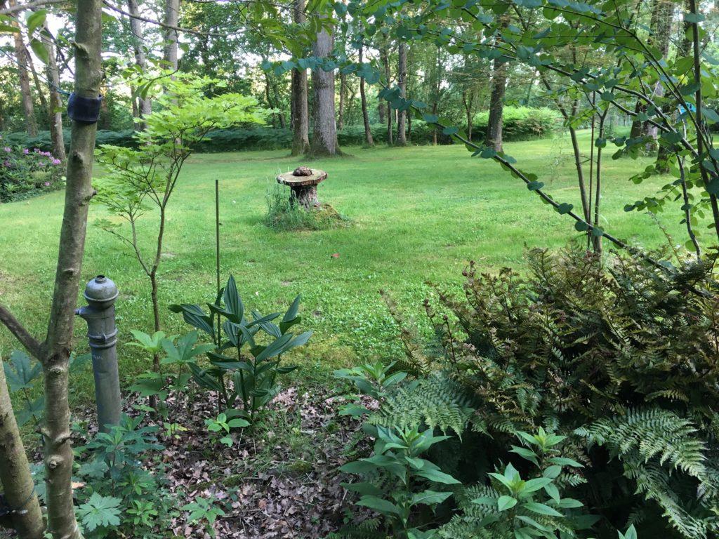 jardin agnes 11
